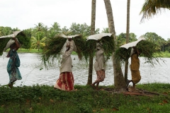 vaikom-village-woman-kerala